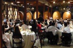 jacqui_john_wedding_wine_country_entertainment_chuck_the_dj_lehnhard_V.sattui_winery_st helena...JPG