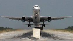 Bobcat Standing Behind New Facade with Jet Plane1.jpg